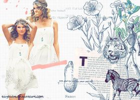 Taylor Swift Blend 02 by taynabs
