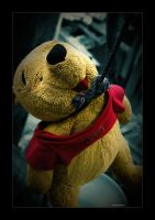 The Death of Winnie the Pooh by lxrichbirdsf