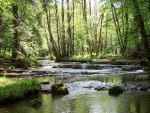 Flowing Stream 4572398 by StockProject1