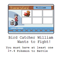 Bird Catcher William Battle by MyPokemonStory