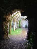 Old abbey 04 by Audrade-Stock