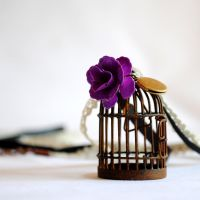Rusty Cage Pendant by RagDolliesMadhouse