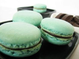Teal macarons by SkuttyWan