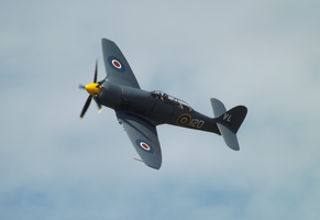 Sea Fury by JHayday