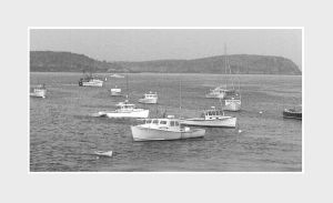 Maine Lobster Boats by jackaltooth