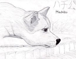 Hachiko by NiegelvonWolf