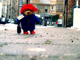 Paddingtons journey Part I by GraceGibson