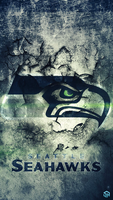 Seahawks Cracked by Stealthy4u