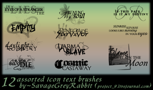 Icon Text Brushes For PS.7 by SavageGreyRabbit
