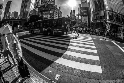 Shibuya Crosswalk by TimGrey