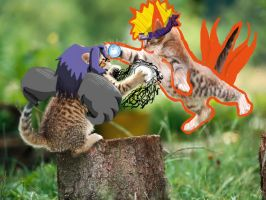 kitties naruto fighting by dark-ishida-lover