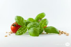 Basil With Tomato by tomislavkljucaric