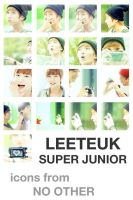 LeeTeuk icons from No Other by e11ie