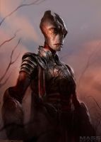 Mass Effect Medieval by DavidRapozaArt
