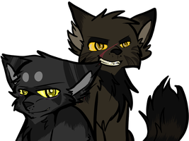 Tigerstar and Darkstripe by Homohelvetti