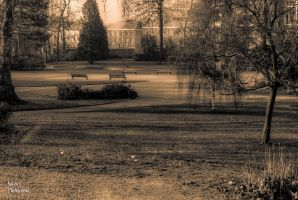 The park... by DiY171
