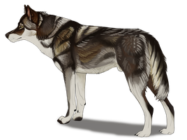 Wolf design for AgentWhiteHawk by Maranez