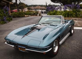 Blue67Stingray by tbeam3472