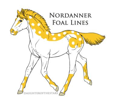 A5064 foal design by Seri-goyle