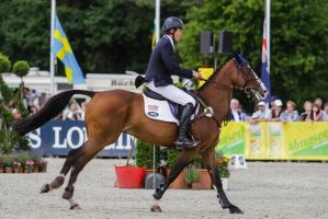 3DE Show Jumping Phase Stock 51 by LuDa-Stock