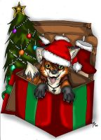 Christmas Present 2009 by WildTheory