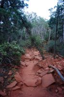 Red Dust Path by dollieflesh-stock