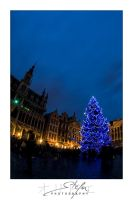 The grand place 11 by ostefn