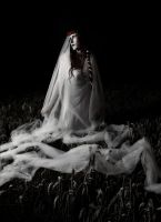night bride by silent-order
