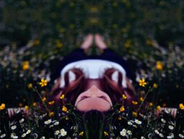 Symmetric dreams by Thynies