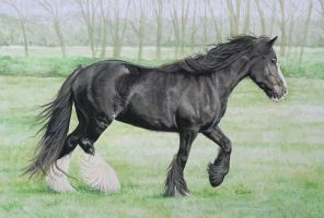 Horse 2 by CBailey52