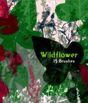 Wildflower 15 Brushes by EvaShoots