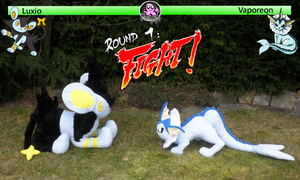 Round one. Fight! by PinkuArt