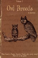 Owl Breeds by Lost-in-Hogwarts