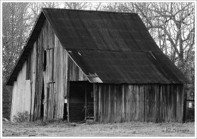 Country living by Alabamaphoto