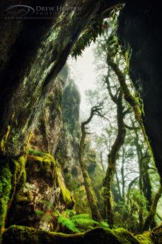 Weeping Rock by DrewHopper
