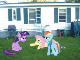 Twilight, Rainbow Dash, and Fluttershy by Catoz
