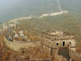 Great Wall by EliN-lianoR