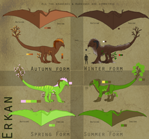 Reference sheet : Erkan V.3 by Lycandra