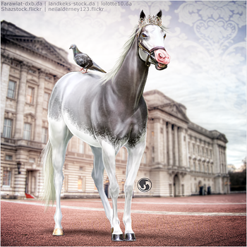 HEE Horse Avatar - Prince George by art-equine