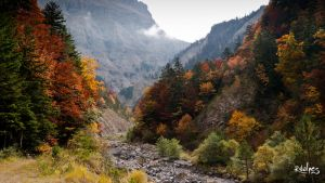 The vallon in autumn by rdalpes