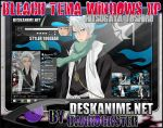 Hitsugaya Toshiro Theme Windows XP by Danrockster