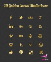 20 Golden Social Media Icons PSD by psdbird