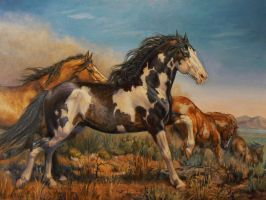 Mustangs - On the Run by KerryOriginals