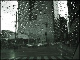 Rain in the city by theflickerees
