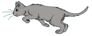ThunderClan - Ferncloud by WildpathOfShadowClan
