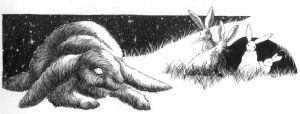 watership down chapter heading by grimmig
