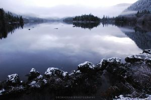 Winter is Coming by drewhoshkiw