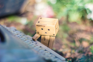 Danbo writes a story by Pamba