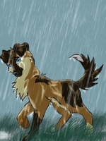 In the rain by Natuk