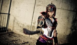 AX2011 - Dynasty Warriors by MikeRollerson